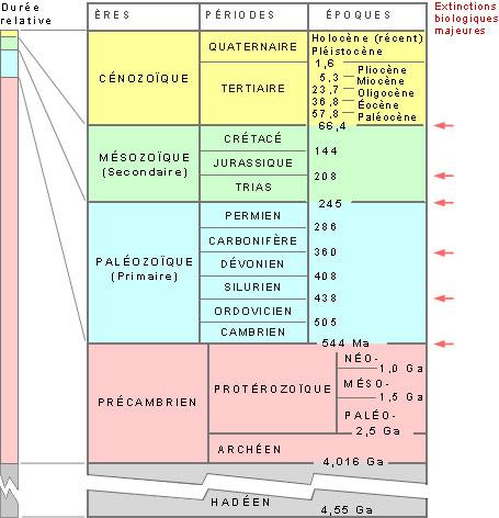 Fig. 2 : Ages de formation des charbons – Source : Svtmarcq.over-blog.com
