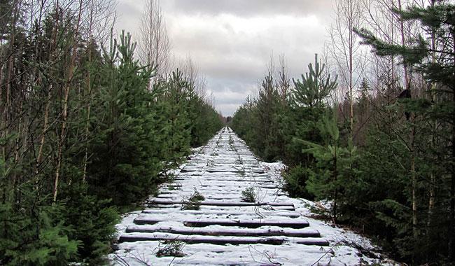 Fig. 5 : Construction de chemin de fer – Source : David Mark, Pixabay