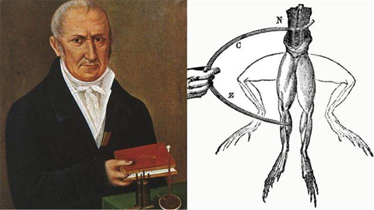 Fig. 4 : Représentations d'Alessandro Volta et de l'expérience de Luigi Galvani sur une grenouille - Source : Wikimedia Commons