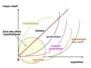 Fig. 7 : Représentation théorique de la relation entre la dose et les effets biologiques