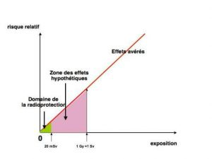 Fig. 8 : Représentation de la zone qui intéresse la radioprotection