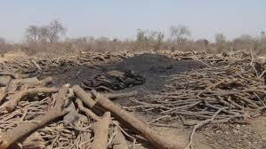 Fig. 6. Production de charbon de bois au mali. Source : maliweb.net