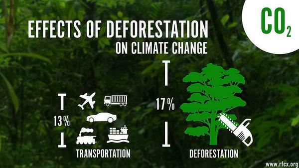 Fig. 6 : Déforestation et émissions de GES. Source : Twitter