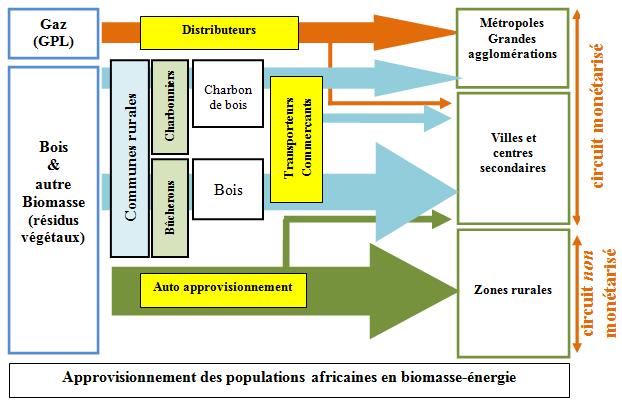 Fig. 5 : Approvisionnement des populations africaines en biomasse-énergie