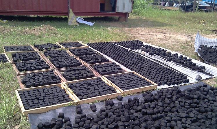 Fig. 3 : Briquettes végétales au Cameroun. Source : Agriculture au Cameroun