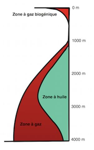 Fig. 1 : Formation et zones de stabilité des hydrocarbures à partir du kérogène en fonction de la profondeur d'enfouissement pour un gradient géothermique normal.