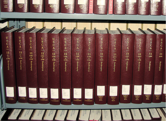 Fig. 5 : The common law.