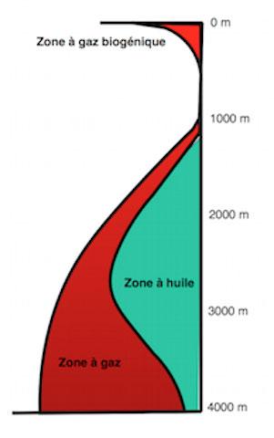 Fig. 1 : Formation des hydrocarbures à partir du kérogène en fonction de la profondeur d'enfouissement pour un gradient géothermique normal.