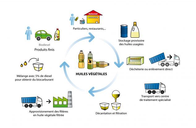 Fig. 6 : Cycle de vie des huiles végétales – Source : Schroll