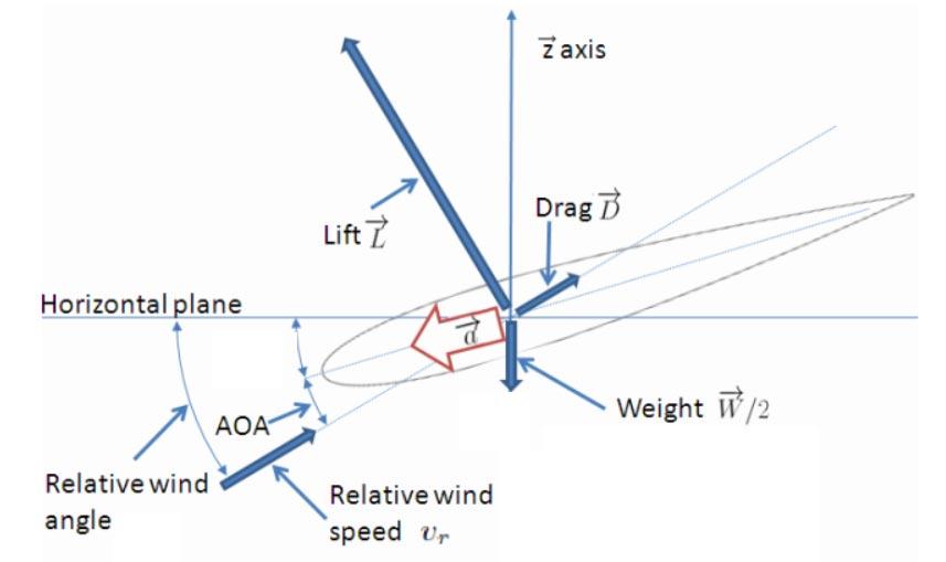 Fig.12 : Ecoulement le long d'une pale de la structure - Source : Thèse Rogelio Lozano [7]