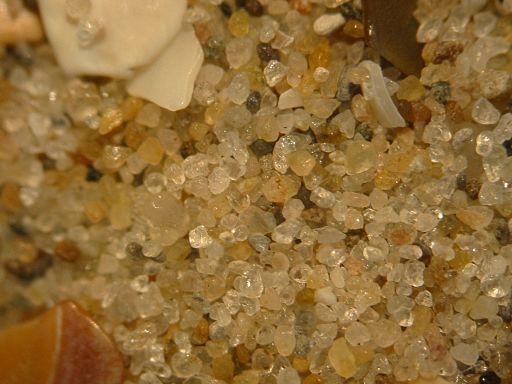 Fig. 2 : Sable hollandais (grains 0,2 à 0,6 mm) – Source : Renée Janssen, domaine public, commons.wikimedia.org