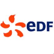 Logo 5 : EDF