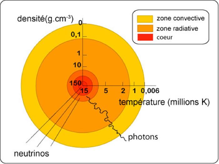 Fig. 1 : Schéma en coupe du soleil