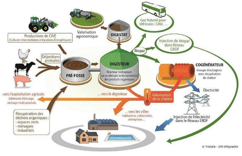 Fig. 11 : Méthanisation à la ferme – Source : Schéma du dossier de presse « Cobiogaz » 22 mars 2018.