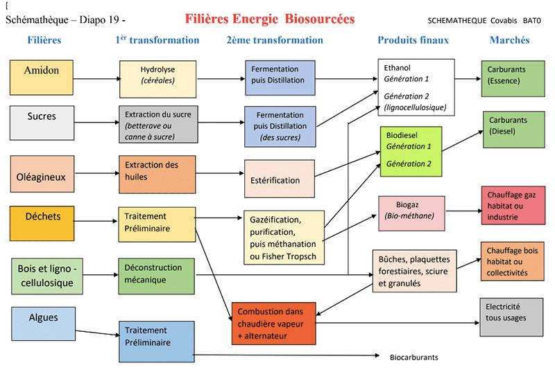Fig.8 : Les principales filières de production des produits énergétiques