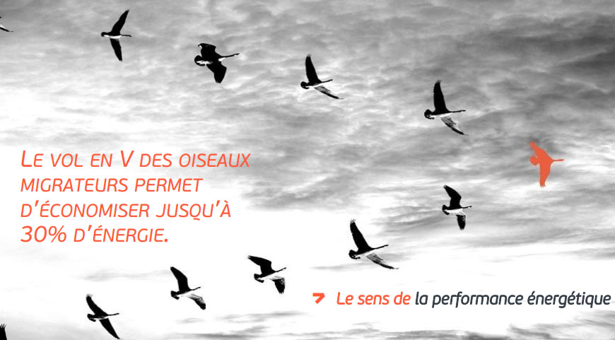 Encyclopedie energie - efficacite energetique - H3C-Energies - plaquette