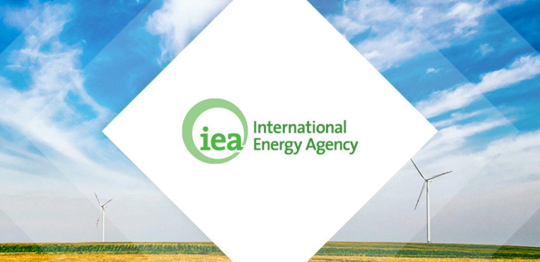 L'Agence Internationale de l'Énergie : genèse, rôle et actions